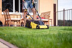 Lawn mower, green grass, equipment, mowing, gardener, care, work, tool, home, housekeeper on work