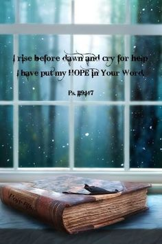 Psalm 119:147..I rise before dawn and cry for Your help. I have put my hope in your word.