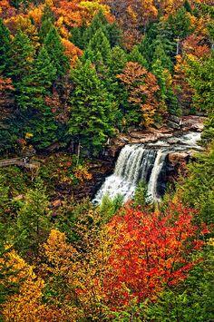Blackwater Falls - WV definitely want to see this! Blackwater Falls, All Nature, Autumn Nature, Nature Water, Autumn Scenery, Beautiful Waterfalls, West Virginia, Virginia Fall, Belle Photo