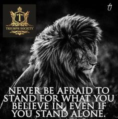 Life Quotes Best 377 Motivational Inspirational Quotes for success 173 Life Quotes Love, Badass Quotes, Inspiring Quotes About Life, True Quotes, Great Quotes, Quotes Quotes, Lion Quotes, Wolf Quotes, Wisdom Quotes