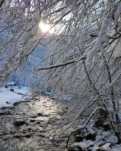 Reposting @razinhio: le lever de soleil sur le cirque de saint même en savoie !!!sans filtre et sans retouche comme si vous y étiez🤣😂 bonne journée!!! #lifestyle #travel #sun #clouds #follow4follow #love #my #life #photographer #tree #photography #photo #picoftheday #photooftheday #instagram #sunset #instagood #instalike #like #cool #nature #like4like #mountains  #good #snow #beautiful #paradise #france #sunrise #river