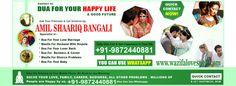 Love Guru in India