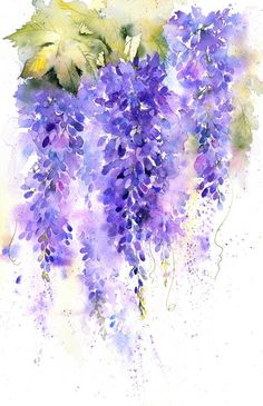 Wisteria in Watercolour painting project - Rachel McNaughton Watercolor Landscape, Abstract Watercolor, Watercolor Flowers, Watercolour Painting Easy, Watercolor Artists, Abstract Paintings, Landscape Paintings, Watercolor Pictures, Watercolor Portraits