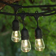 48 ft Black Commercial Medium Suspended Socket String Light & LED Professional S14 Warm White Bulbs