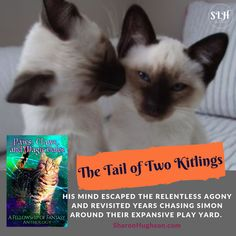 Paws, Claws, and Magic Tales: A Fellowship of Fantasy Anthology Magic Cat, Fantasy Authors, Play Yard, Paws And Claws, Relentless, Savannah Chat, Finding Yourself, Reading, Books