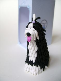 A most amazing Bearded Collie dog with a pictorial of her process.