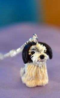 Maltezer Terrier ketting