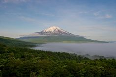 Fuji and the sea of ​​clouds