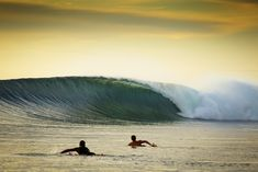 Lance's Right | #surfspot #wave #right #indo #mentawai