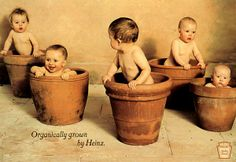 organic-baby-food-heinz.jpg (600×412)