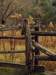 Dumbfounding Cool Tips: Fence Landscaping On A Budget dog fence thoughts.Fence For Backyard Driveways. Front Yard Fence, Farm Fence, Fence Gate, Fenced In Yard, Horse Fence, Brick Fence, Concrete Fence, Bamboo Fence, Dog Fence