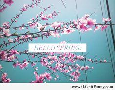 Pretty hello spring pic