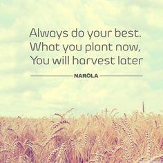 #doyourbest #narola #quotes