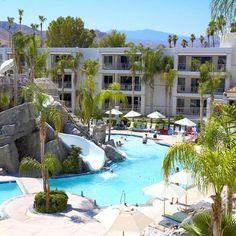 Palm Canyon Resort & Spa: Pool Area