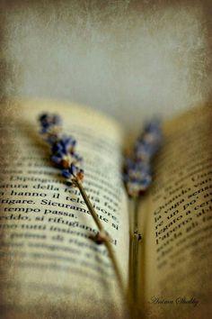 ...insan bazı günleri, kitapların arasın'da saklayıp kurutmak istiyor!...  - İsmet Özel