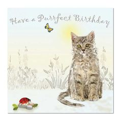 Cute Cat Birthday Card - Purrfect Birthday Cat Birthday, Birthday Cards, Happy Birthday, Wholesale Greeting Cards, Unique Cards, Cute Creatures, All Print, Cardmaking, Artist