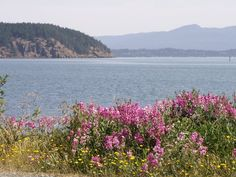 Disappear from the world in Anacortes, WA. Anacortes is homeport to the San Juan Islands in the Pacific Northwest located on ... point for the San Juans and International ferry runs for Washington State.