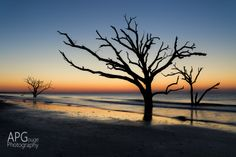 I'm lucky to live in a beautiful state, South Carolina.  One of the most beautiful spots is a place called Botany Bay near Edisto Island.  I shot this before dawn on 3/10/14.