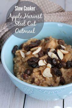Slow Cooker Apple Harvest Steel Cut Oatmeal. Delicious steel cut oats made in the crock pot.