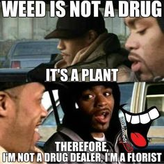 Funny Pictures, Funny jokes and so much more   Jokideo   Weed is not a drug   http://www.jokideo.com