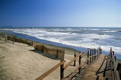Beach of Sabaudia (LT) - Riviera of Ulysses.