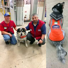 "Home improvement retailer Lowe's Canada took to social media to announce that it had brought on staff an inseparable pair who: ""A recent hire is a gentleman that was having difficulty finding employment because of a brain injury and a support dog. So we did what Lowe's does best: we hired him and outfitted Blue, our customer service canine, with his very own vest and name tag!""  #lowes  #compassioncounts  #servicedog"