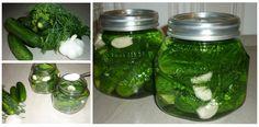 Einmachen: Salz-Dill-Gurken – Essen ohne Grenzen