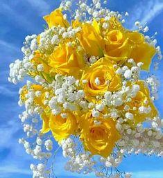 Beautiful Rose Flowers, Beautiful Flower Arrangements, Elegant Flowers, Amazing Flowers, Rose Flower Wallpaper, Wallpaper Nature Flowers, Flowers Nature, Hippie Wallpaper, Wallpaper Iphone Cute