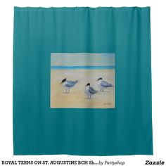 ROYAL TERNS ON ST. AUGUSTINE BCH Shower Curtain