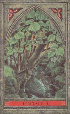 Green Man Tree Oracle: Twigs of Hazel are placed in window frames to protect the house against lightning, and three pins of hazel wood driven into your house will protect it from fire.