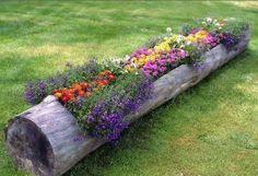 Floral log