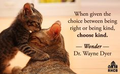 """When given the choice between being right or being kind, choose kind."" - Dr…"
