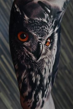 25 best photos of owl tattoos - sign of wisdom Check more at http://tattoo-journal.com/25-best-photos-of-owl-tattoos/