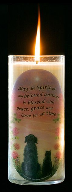 ♥ For all the pets that have passed ♥