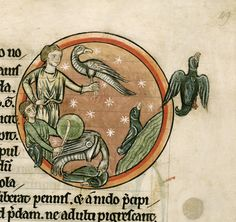 """Miniature of a pair of men using hawks to hunt ducks. """"Bestiary, with extracts from Giraldus Cambrensis on Irish birds"""", Harley 4751, folio 49, south England (Salisbury), second quarter of the 13th century. Located in The British Library."""