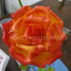 In This post, I would like to share with you the tutorial on how to make a rose flower using air dry clay.                  ...