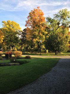 A wonderful botanical garden worth while to visit.