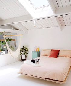 3 Reasons Why You Should Switch to Organic Bedding