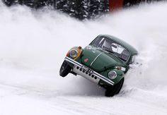 Snow beetle
