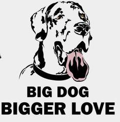 Big Dog BIGGER Love