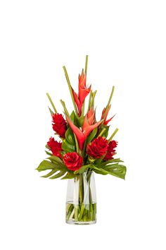 Heliconia with ginger flowers, a tropical paradise!