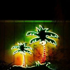 Palmtree neon, Miami