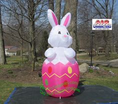 Easter Bunny In Purple Egg