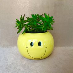 Happy Face Planter Yellow Smiley Face Get Well Gift by DotnBettys