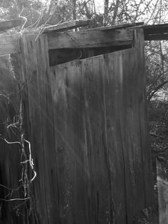 Outhouse, Lauderdale County, TN.