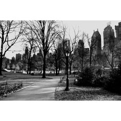 Central Park New York ($30) found on Polyvore