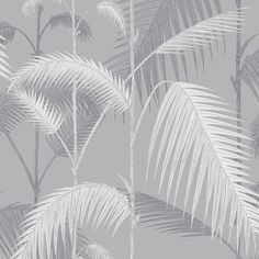 Cole & Son  Palm Jungle Wallpaper - 95/1007 ($110) ❤ liked on Polyvore featuring home, home decor, wallpaper, backgrounds, grey, grey wallpaper, leaf wallpaper, grey home decor, paper wallpaper and gray wallpaper