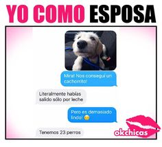 Amor por lo peritos! Funny Text Messages, Cute Animals, Animals And Pets, Chiste Meme, Dog Love, Funny Dogs, Funny Texts, El Humor, Jokes