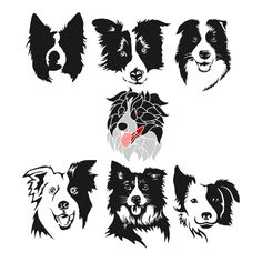 Terrific Pic Border Collies silueta Strategies The actual Line Collie hails with the borderlands of He uk and also Scotland (hence the particular identity! Perros Border Collie, Border Collie Art, Silhouette Clip Art, Illustration, Collie Dog, Dog Tattoos, Australian Shepherd, Dog Art, Pet Portraits