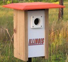 Illinois NCAA Bluebird/Songbird House